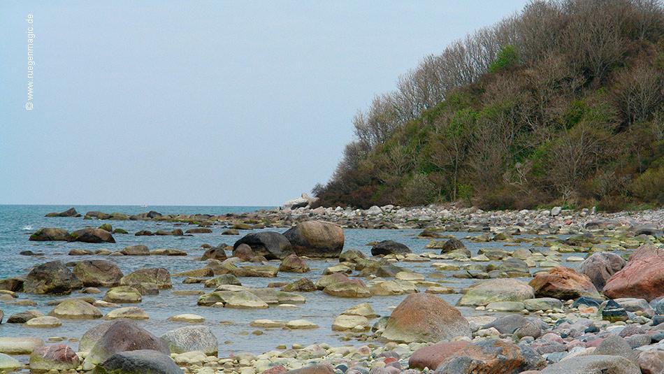 Findlinge an der Nordküste Rügens