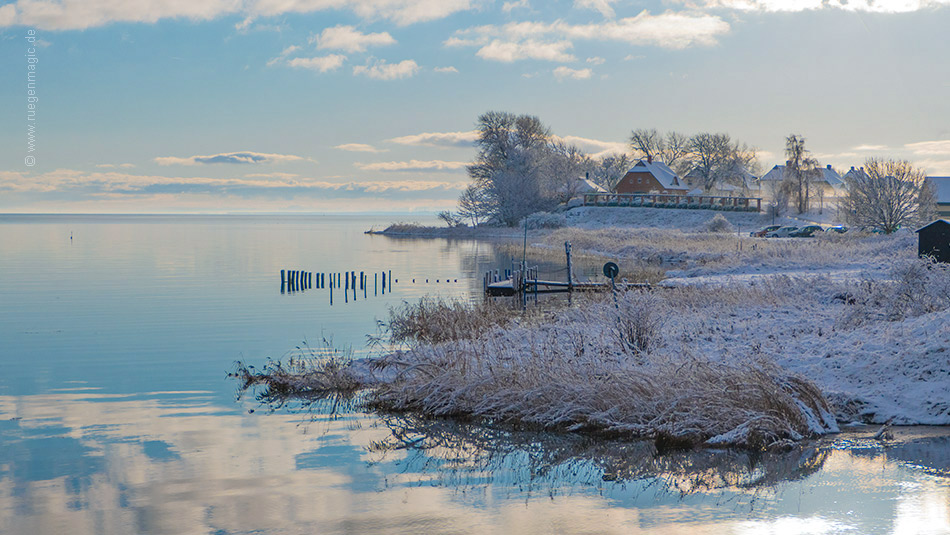 Wintermorgen am Bodden