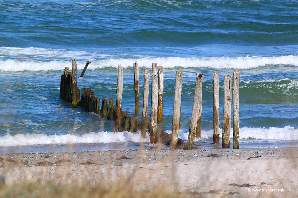 Buhne am Strand der Schaabe bei Juliusruh
