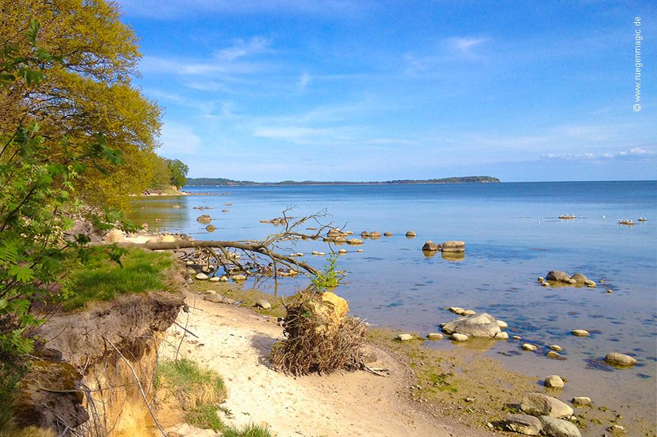 Strand Wreechen am Greifswalder Bodden