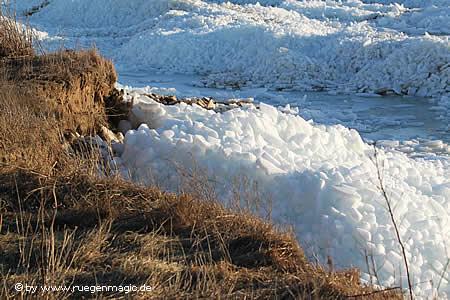 Die Eisschollen reichen bis zur 3 Meter hohen Steilküste