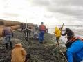Reges Treiben wegen den Bernsteinen am Ostseestrand