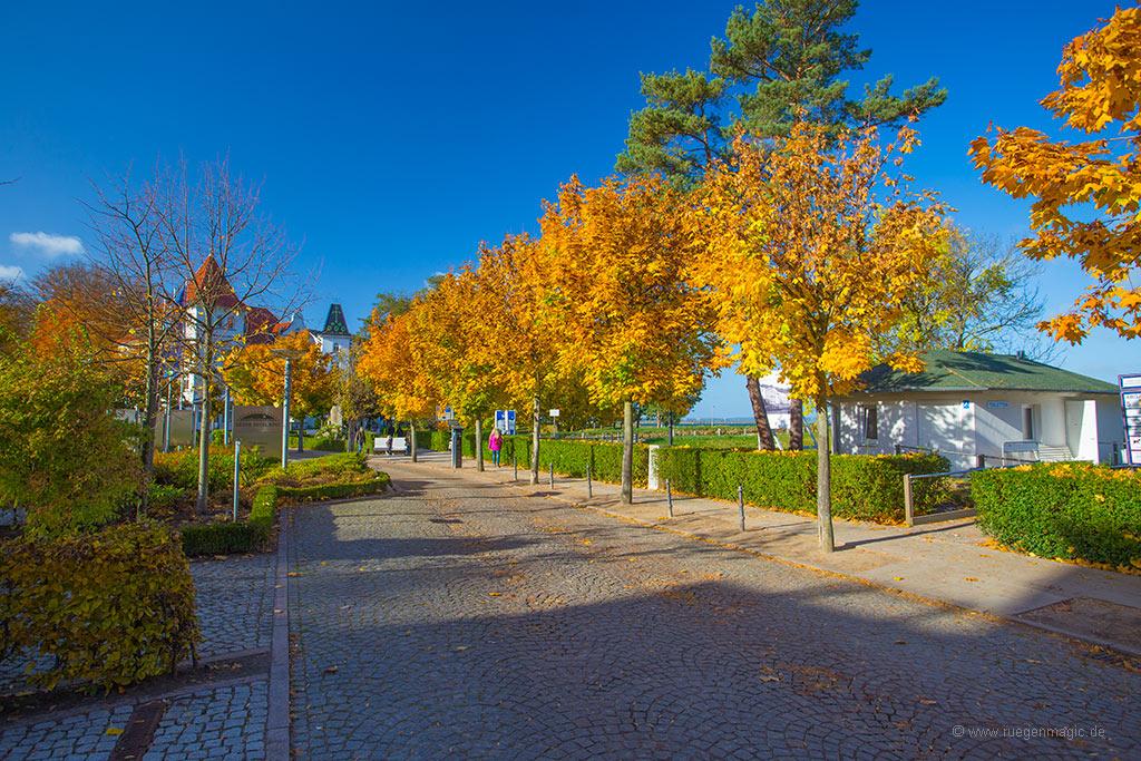 Herbsturlaub 2020 auf Rügen trotz Coronakrise möglich
