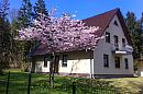 3 Ferienwohnungen für 2, 4 und 5 Personen im Ostseebad Sellin