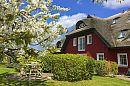 3 Ferienwohnungen im Fischerdorf Alt Reddevitz auf der Halbinsel Mönchgut